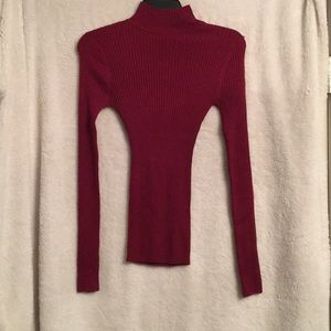Fitted maroon turtle neck sweater